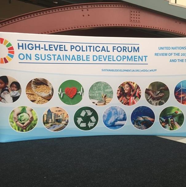 QEW UN Banner 2017